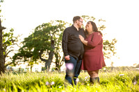 Engagement Session at Upper Bidwell Park